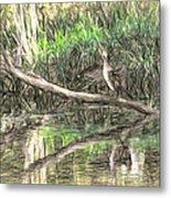 Artistic Drying Cormorant- Black Bird Sitting On Log Over Water Metal Print