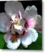 Artistic Shades Of Light And Pollinating Bee Metal Print