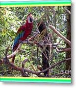 Artistic Wild Hawaiian Parrot Metal Print