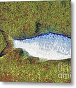 Artistically Painted Fish Metal Print