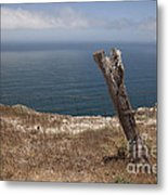 Artist's Retreat Metal Print