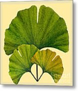 Arts And Crafts Movement Ginko Leaves Metal Print