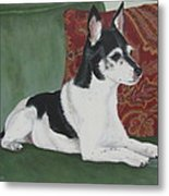 Ashley On Her Sofa Metal Print by Sandra Chase