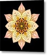 Asiatic Lily Flower Mandala Metal Print