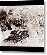 Askew Nature Picture Metal Print