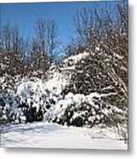 Asleep Under The Snow Metal Print