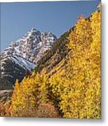 Aspen And Mountains 4 Metal Print