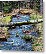 Aspen Crossing Mountain Stream Metal Print