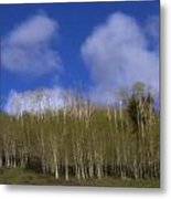 Aspen Dream Metal Print