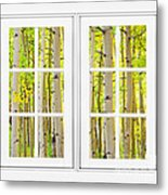 Aspen Forest White Picture Window Frame View Metal Print