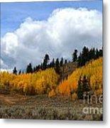 Aspen Hillside Metal Print