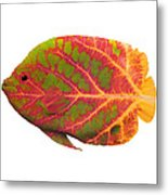 Aspen Leaf Tropical Fish 1 Metal Print
