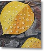 Aspen Rain Metal Print