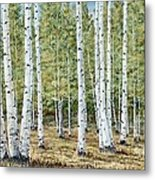 Aspen South Saddle Blue Mtn 24 X 48 Metal Print
