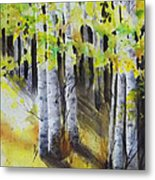 Aspen Trail Metal Print