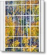 Aspen Tree Magic Cottonwood Pass White Window Portrait View Metal Print by James BO  Insogna
