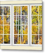 Aspen Tree Magic Cream Picture Window View 3 Metal Print by James BO  Insogna