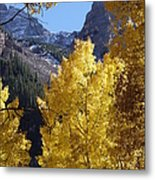 Aspen Window Metal Print