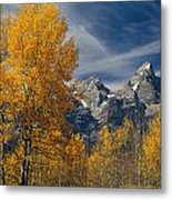 1m9352-aspens In Autumn And The Teton Range Metal Print