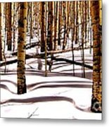 Aspens In Winter Metal Print by Claudette Bujold-Poirier