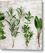 Assorted Fresh Herbs Metal Print