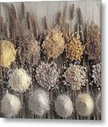 Assorted Grains And Flour Metal Print
