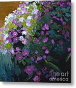 Asters Metal Print by Melody Cleary