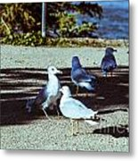 At Flight-1 Metal Print