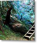At Home In Her Forest Keep - Pacific Northwest Metal Print