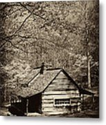 At Home In The Appalachian Mountains Metal Print by Paul W Faust -  Impressions of Light