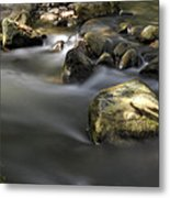 At The Banias River 2 Metal Print