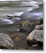 At The Banias River 3 Metal Print