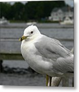 At The Boat Landing Metal Print