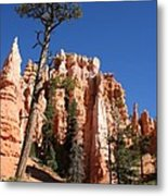 At The Bottom Of The Bryce Np Metal Print