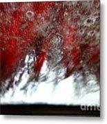 At The Car Wash 14 Metal Print