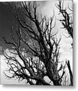 At The End Of Time Metal Print