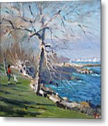 At The Park By Lake Ontario Metal Print