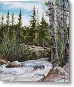 At The Top Of Alberta Falls Metal Print