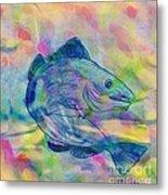 Atlantic Codfish Digital Color Metal Print