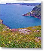 Atlantic Ocean From Signal Hill National Historic Site In Saint John's-nl Metal Print