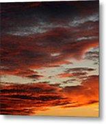 Audubon Sunset Light Metal Print