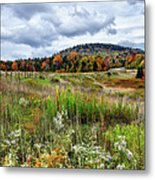 August Fall Colors Flowers And Trees I - West Virginia Metal Print