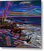 Aurora Borealis Over Florida Metal Print