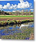 Australian Landscape Metal Print
