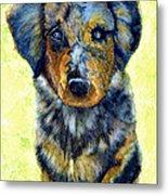 Australian Shepherd Puppy Metal Print by Janine Riley