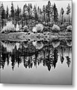 Autumn Reflection Black And White Metal Print