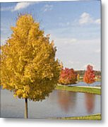 Autumn Day By The Lake Metal Print