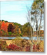 Autmn Pond Closer Look Metal Print