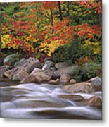 Autumn Along Swift River  Metal Print