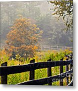 Autumn Along The Fence Metal Print